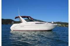 Sea Ray 3100 twin diesel