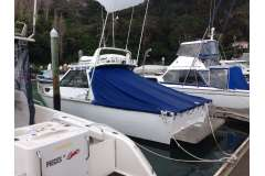 8.6m Bluefin Diesel