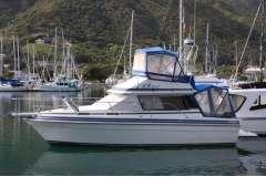 Tidy Markline 900