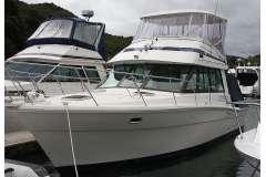 Popular Riviera Bluewater 35