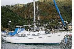 Cape Carib 33