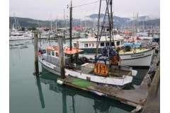 Saunders 43ft Trawler
